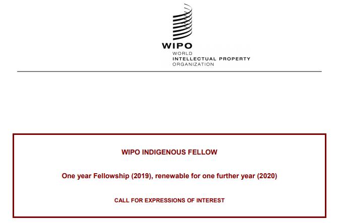 Apply: World Intellectual Property Organization (WIPO) Indigenous
