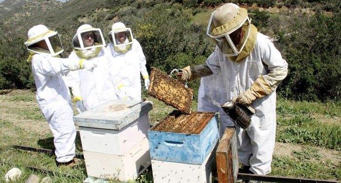 μελισσοχώρια