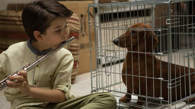 weiner-dog-sundance-movie
