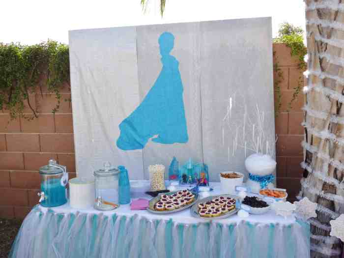 Disney Frozen Birthday Party On A Budget A Fun And Frugal Life