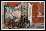 BENEVISIE 2012 K 09 Ton van Boxsel 1