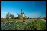 12 Gerard van Poppel