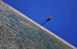 67 Roger Verburgh Lamp