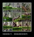 11 FVDM 160511 SERIE 7 Piet Hanegraaf (1)