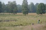 FT 160612 Kortenhoeff Huijbergen Ton van Boxsel (5)