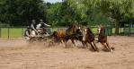 TENTOONSTELLING 2018 Joop Rijndorp (3)