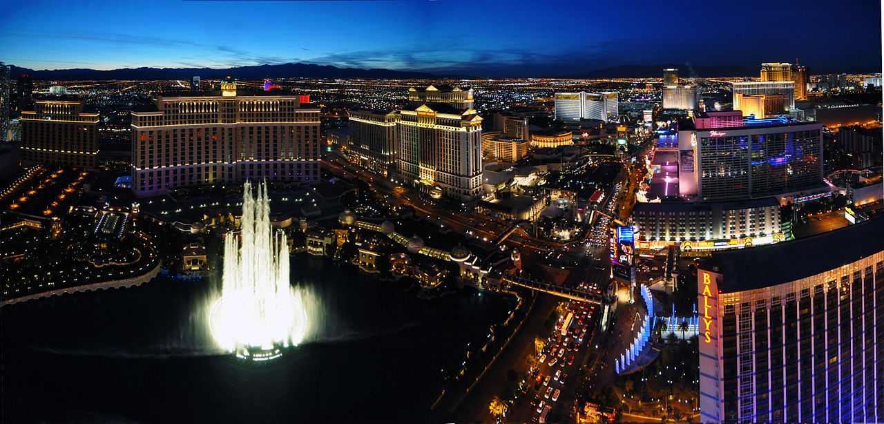 And They Were There: Reports of Meetings, ALA Annual 2014 in Las Vegas