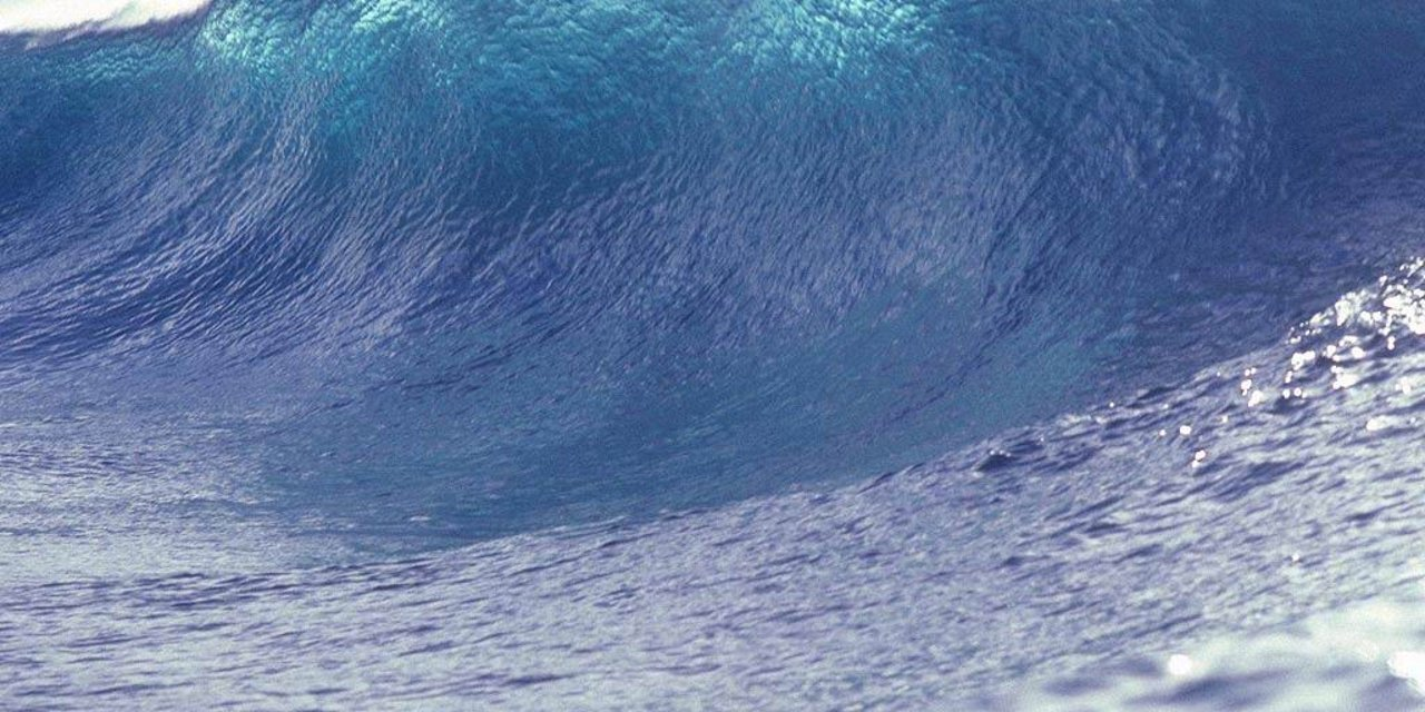ATG Quirkies: Just in Time for Summer: Surf Noir's Up