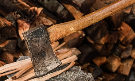 "ATG Quirkies: A ""Completely Gripping"" book on Wood Chopping for Winter"