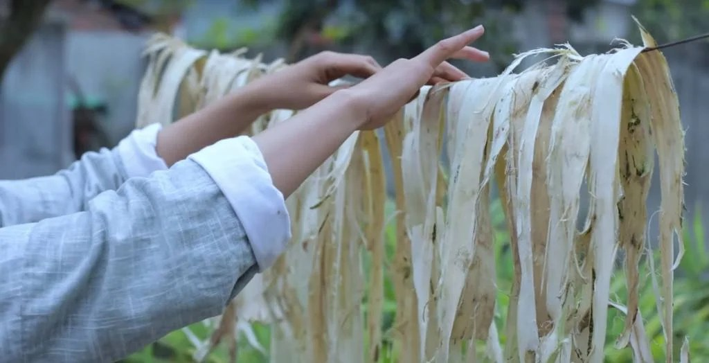 ATG Quirkies: First You Cut Some Trees: Traditional Paper Making in China