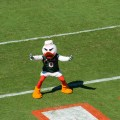 The Miami Hurricanes have not been good this season. Flickr/http://bit.ly/1LfEu36/Ricardo Reyes