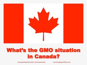 GMO Situation in Canada