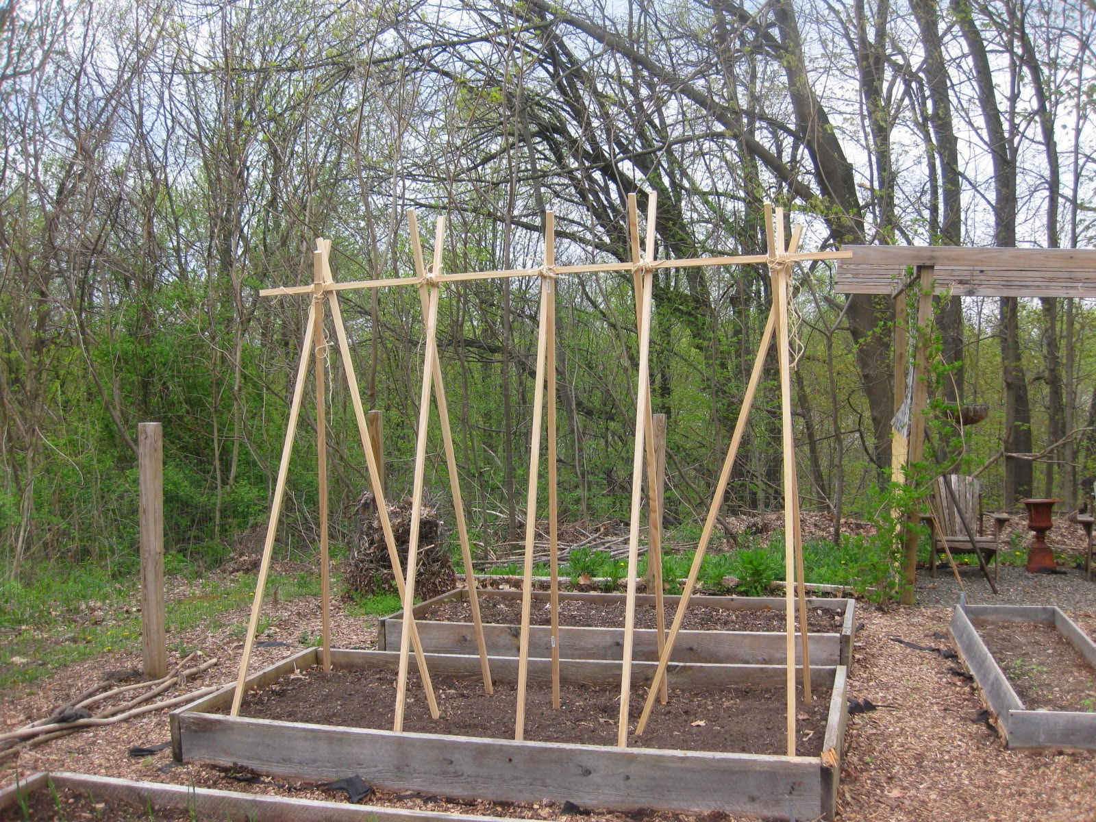 My Joan Crawford Approved Tomato Trellis