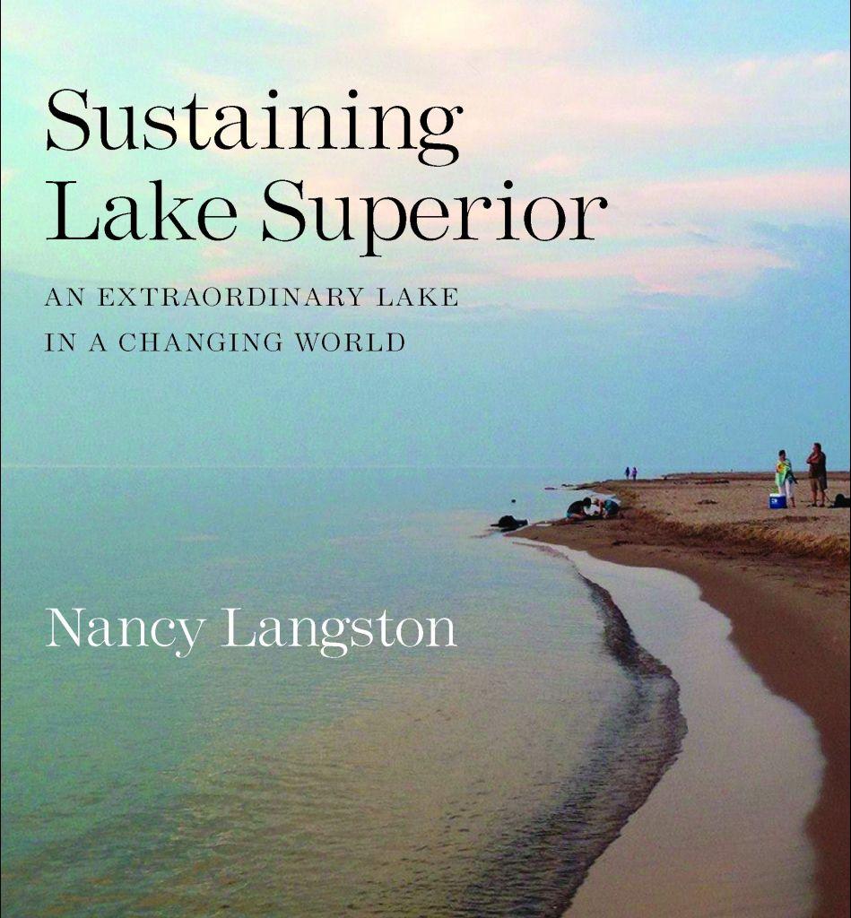 Superior book cover