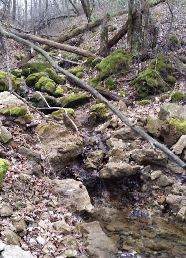 Erosion on Broberg farm. Photo: Jeffrey Broberg