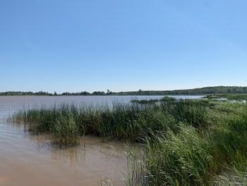 mix of habitats. This wetland is in Allouez Bay. Photo courtesy Sarah Janssen