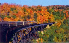 Agawa Canyon Fall Color Train Tour