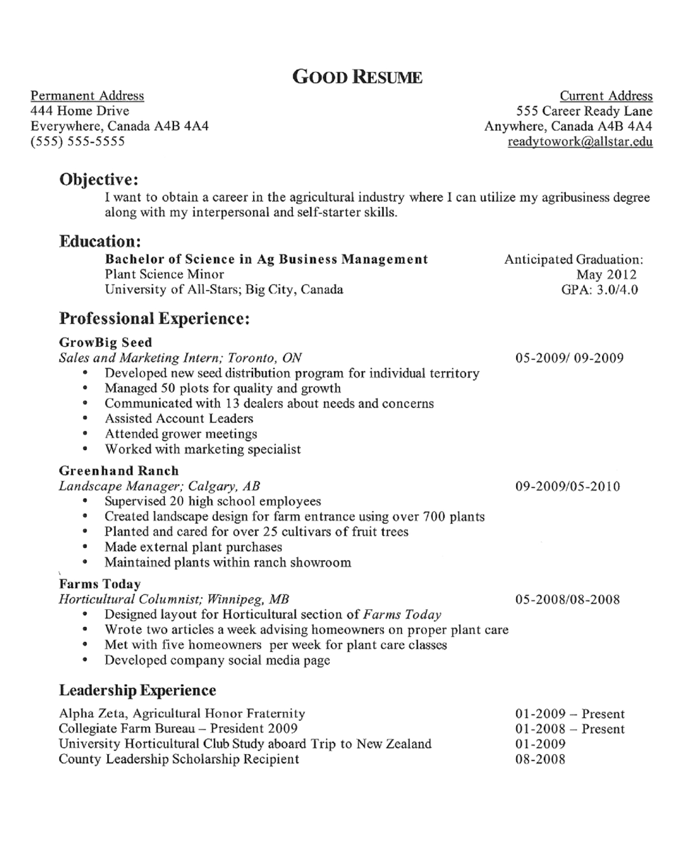 Best job resume objectives – Objectives on Resume