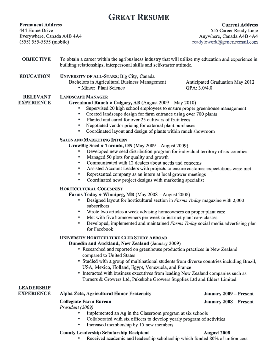 resume title ideas resume titles samples x socialscico resume
