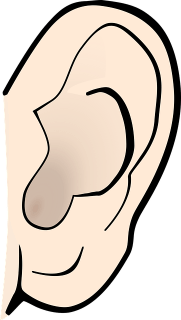 Ear. Somebody always listens if you are dictating