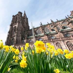 Abords de la Cathédrale de Strasbourg