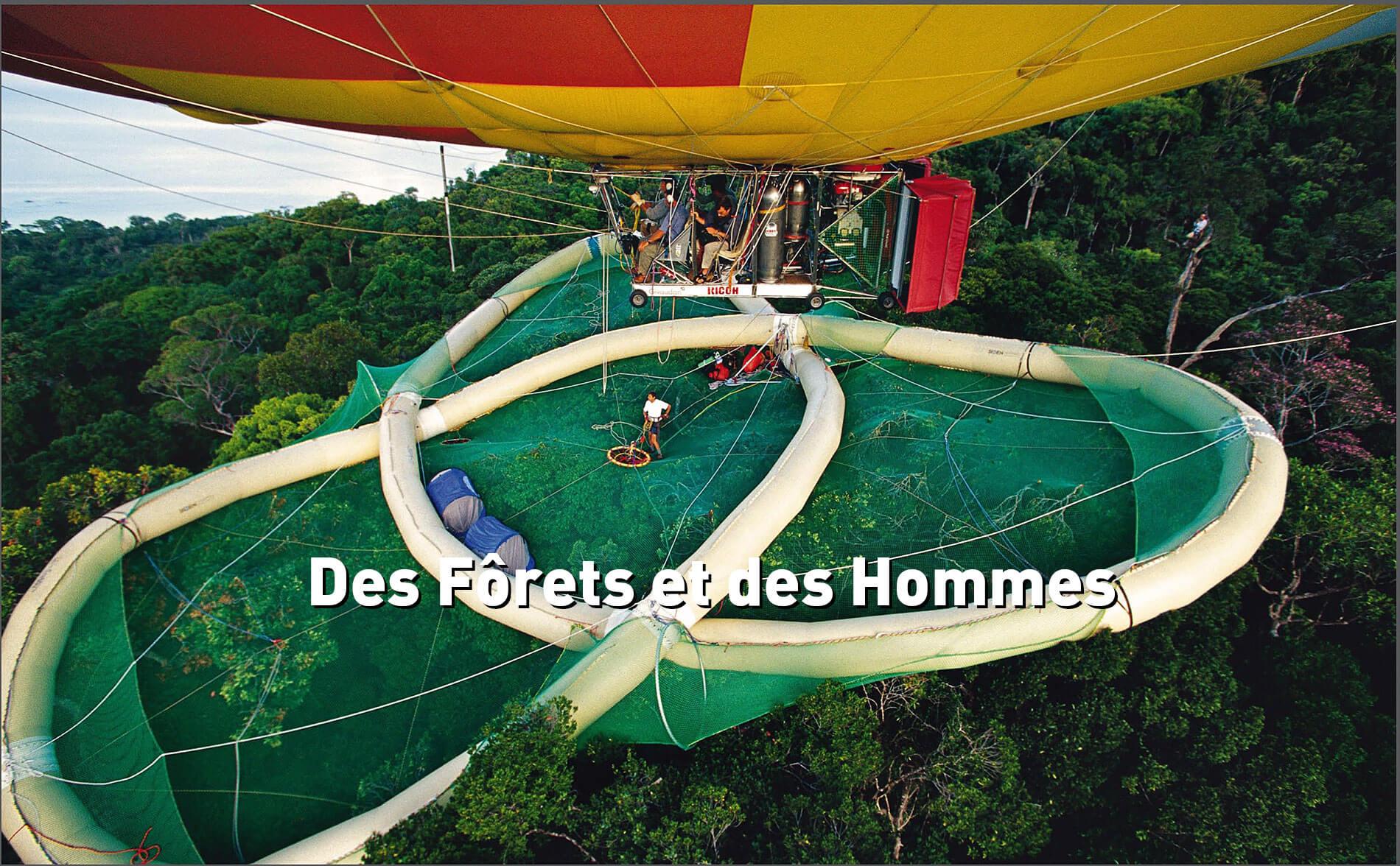 Documentaire des forêts et des Hommes