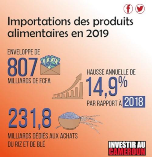 importation riz