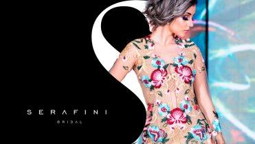 Blank Agência Criativa - Design Gráfico - Serafini