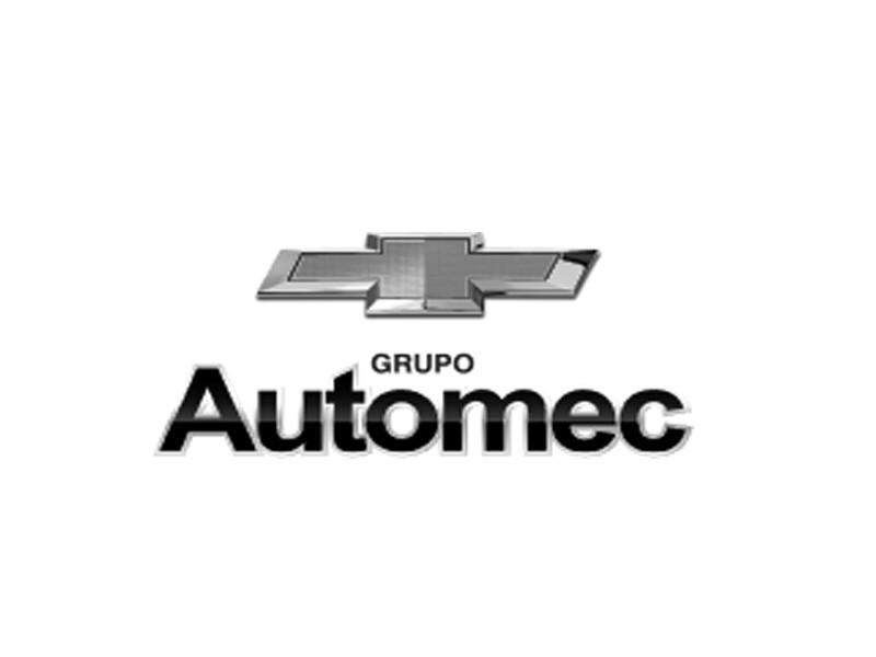 grupo-automec