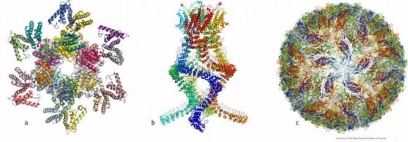 171004_nobel_quimicamoleculas_NobelPrize