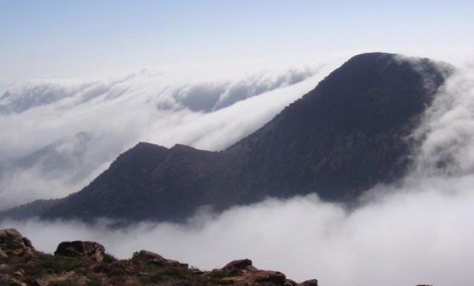 Niebla en la montaña