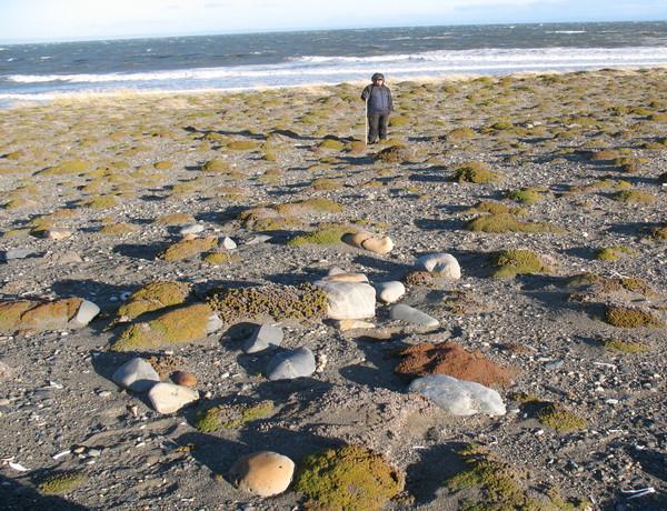 Lugar del hallazgo junto a la costa de la Bahía Inútil, Tierra del Fuego / Universidad de Magallanes