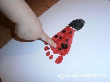 amprenta piciorus buburuza
