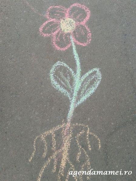 activitate copii desen creta structura florii