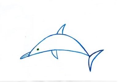desenam delfin