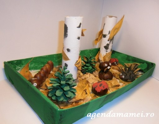 craft padurea toamna