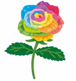 flower_rose_rainbow.jpg