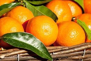 fruit-1960405_640.jpg
