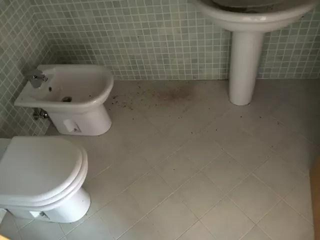 Appartamento Cerreto Guidi Lazzeretto Mansarda Tre Vani Mq 100 (45)