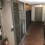Appartamento Quattro Vani Dogana Nuova Due Livelli Mq 100 (54)