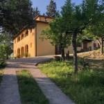 Villa Leopoldina Mq 400 Firenze Pontassieve 15 vani terreno 2,5 Ettari (88)