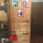 Villa Terra Tetto Doganaccia Due Vani MQ 75 Giardino MQ 450 (63)