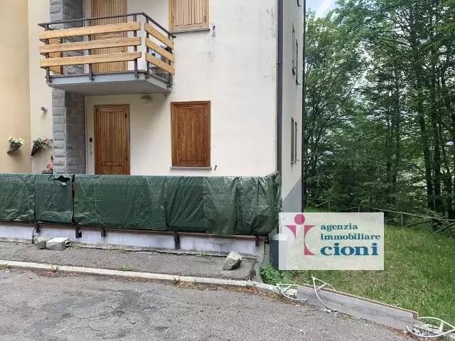 Bilocale Parco dei Daini Faidello Mq 40 Cantina (18)