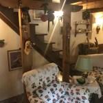 Villetta Faidello Abetone Terratetto Mq 250 Sette Locali (17)