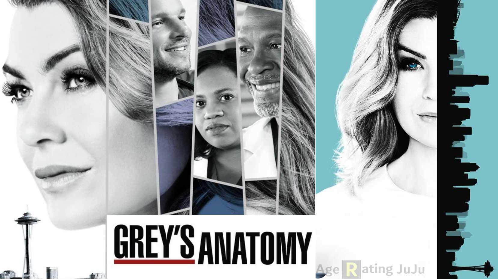 Grey\'s Anatomy Age Rating | Netflix TV Show 2018 Parental Guideline