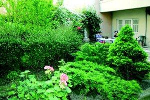 jardin prov 600pi