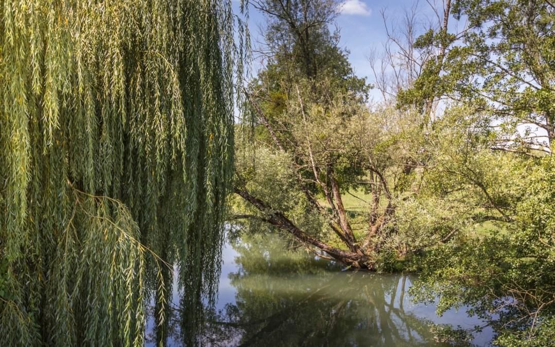 Votre avis sur la rivière Nièvre ?