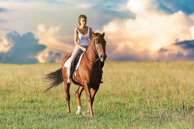 pixabay_woman-3432069_640