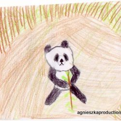 panda drawing by Agi K 2011