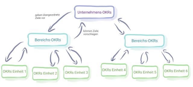 OKRs kann es auf verschiedenen Ebenen der Organisation geben: Auf Gesamtunternehmensebene, auf Bereichsebene und für jede Einheit darunter.  Von oben werden dabei Ziele vorgegeben, von unten können auch Ziele vorgeschlagen werden.